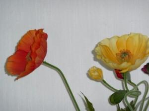 Seidenblumen sind sehr teuer, halten aber mehrere Jahre.