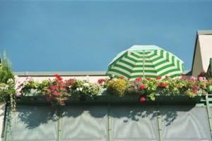 Balkonpflanzen brauchen besondere Pflege.
